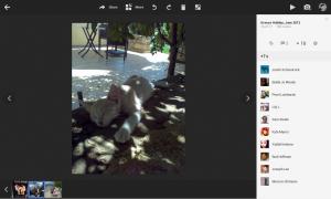 Google+ Photos - Photo +1s View
