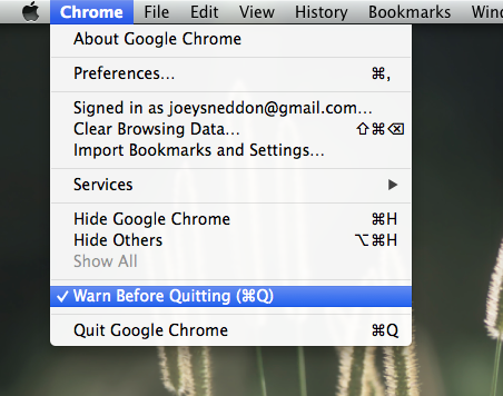 Chrome's Quit Guard Option